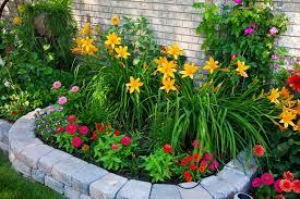 beautiful flower beds