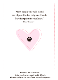 paws and pet sympathy card