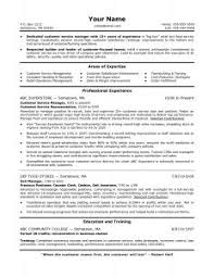Sample Finance Resumes by Free Resume Templates 89 Marvelous Template Word Executive