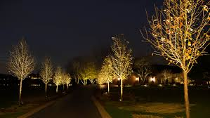 Light On Landscape Outdoor Lighting Ryco Landscaping