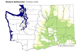 Map Of Oregon And Washington State by Distribution Map Western Rattlesnake Crotalus Viridis