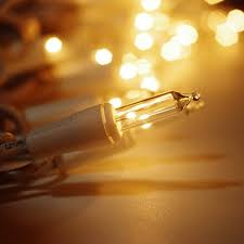 ticoze christmas lights 50 clear light bulbs mini string lights
