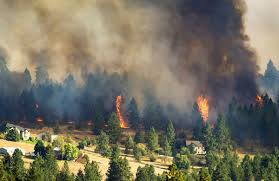 Fire Evacuation Plan Wa by Wildfires Burn 15 000 Acres And Two Dozen Homes In Spokane Area