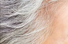 4 home remedies for gray hair that really darkens and adds color