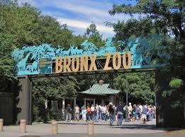 Makeup Artist In The Bronx Bronx Zoo Wikipedia