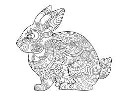 rabbit bunny coloring book adults vector stock vector image