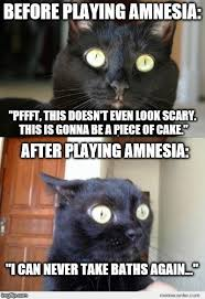 Amnesia Meme - image tagged in video games amnesia scary scared cat horror black