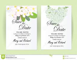 Size Invitation Card Wedding Invitation Card Flowers Jasmine Stock Vector Image 89647824
