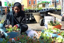 Local Urban Kitchen After Two Decades A Philadelphia Urban Farm Grapples With Growing