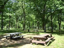 Courts Furniture Store Jamaica Queens by The Best New York Parks For Bbqs And Picnics