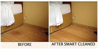 Laminate Floor Smells Musty Hospitality Smart