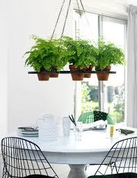 hanging indoor garden home design ideas