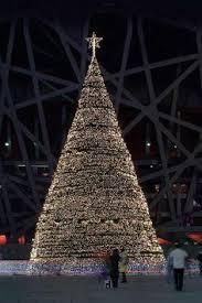 vatican christmas tree christmas around the world