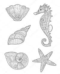 coloring page with seashells seahorse and starfish in