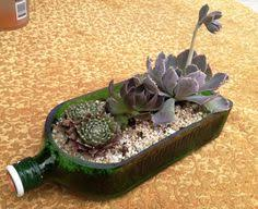 Wine Bottle Planters by 64 Rosette Only Gorgeous Succulents For Wedding Favors Or Shower