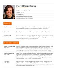 professional resume formats free download   best professional resume format
