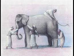 Blind Man And Elephant 11 Best Blind Men And The Elephant Images On Pinterest The
