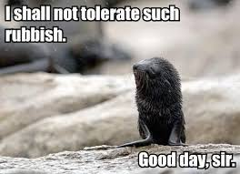 Good Day Sir Meme - i shall not tolerate such rubbish good day sir memes and comics