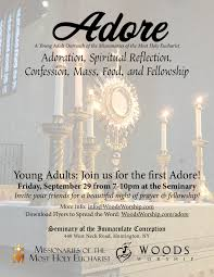 volunteer programs catholic nyc