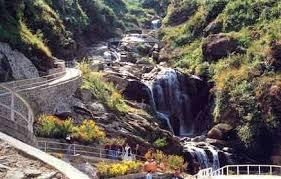 Rock Garden Darjeeling Visit Sikkim