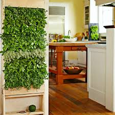 Easy Herbs To Grow Inside 8 Easy Ways To Create A Vertical Garden Wall Inside Your Home