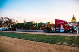 kenworth trucks for sale in washington state christmas tree delivered by kenworth truck to nation u0027s capital