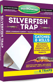 How To Dispose Of Kitchen Knives How To Kill Silverfish 11 Clever Silverfish Killers To Use Pest