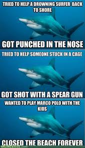 Funny Shark Memes - shark meme funny pictures dump a day