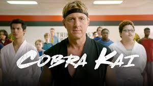Seeking Official Trailer The New Teaser Trailer For Cobra