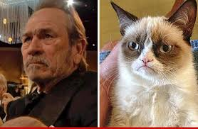 Grumpy Man Meme - tommy lee jones grumpy face meme goes viral tmz com