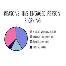 Wedding Planning Memes - wedding planning stress wedding gallery