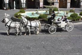 bianchi carrozze noleggio carrozza matrimonio cania noleggio carrozza salerno