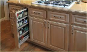 kitchen spice racks for cabinets jpg to rack hangs inside cabinet