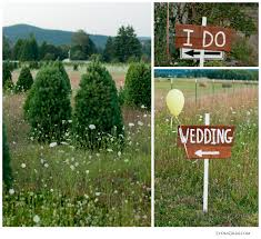 christmas tree farm pleasant hills wedding of bruce and