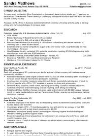 Resume Job Objective Examples Entry Level by Resume Objective Examples It Entry Level