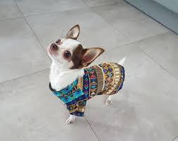 chihuahua sweater etsy