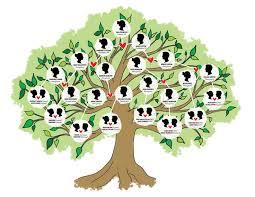 best 25 family tree cakes ideas on adoption cake