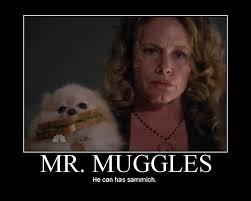 Sammich Meme - mr muggles
