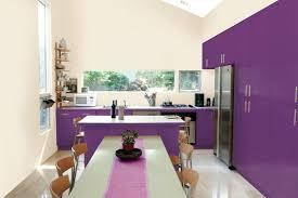idee couleur cuisine moderne cuisine couleur violet decoration cuisine couleur aubergine cuisine