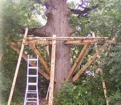 building your own tree house how to build a house how to build a tree house yourself safe tree house construction