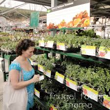 how to plan vegetable garden frugal foodie mama steps in planning an edible organic garden