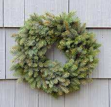 blue spruce blue spruce elves co