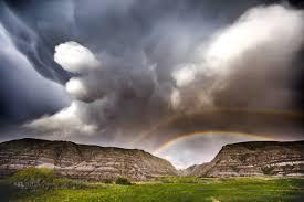 rainbow black friday neil zeller on twitter