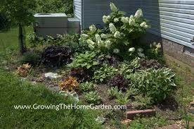 corner shade garden then 2008 and now 2011 growing the home