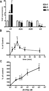 hypoxia and p1 receptor activation regulate the high affinity