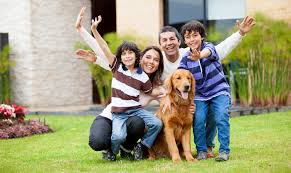 gardendale pet clinic veterinarian in gardendale al usa home