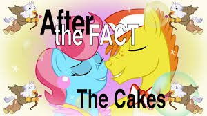 the cakes after the fact the cakes