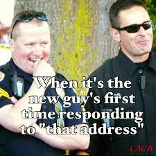Funny Police Memes - 96 best cop humor images on pinterest funny police police