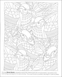 free printable hidden pictures for toddlers hidden animals coloring page ocean habitat coloring pages arctic