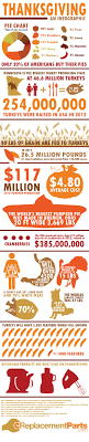 thanksgiving interestingg facts uncategorized infographic